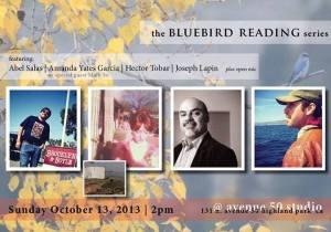 Bluebird reading