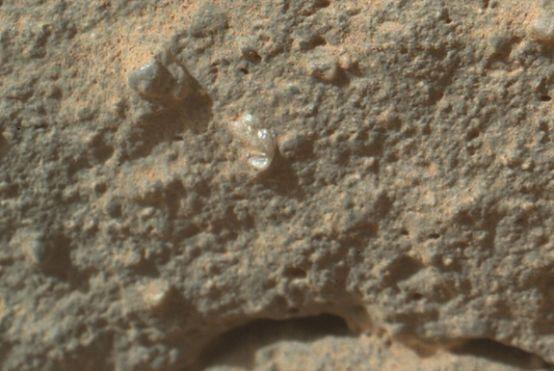 mars-flower-curiosity-closeup