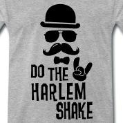 Do-the-i-love-Harlem-shake-internet-meme-dance-T-Shirts