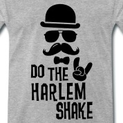 Do-the-i-love-Harlem-shake-internet-meme-dance-T-Shirts