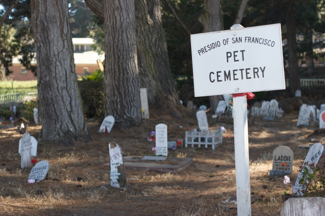 Pet_Cemetery_-San_Francisco-3